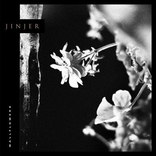 Wallflowers - Jinjer (Cover)