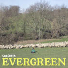 EvergreenCalcutta