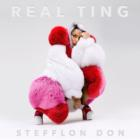 Real TingStefflon Don